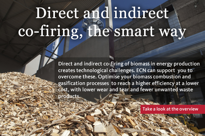 Direct and indirect co-firing, the smart way